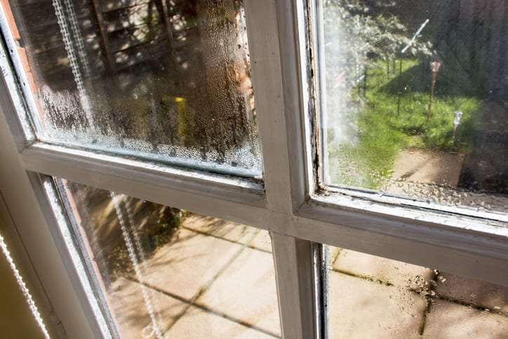 You'll Love These Benefits When You Choose Replacement Windows for Your Home