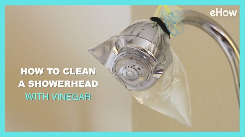 how to clean a showerhead with vinegar