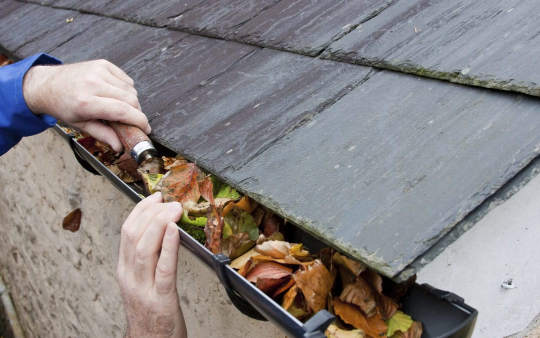 4 Dangers Of Having Clogged Gutters